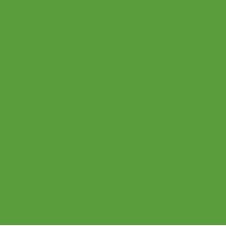 Theoriekoning logo ster